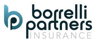 Borrelli Partners